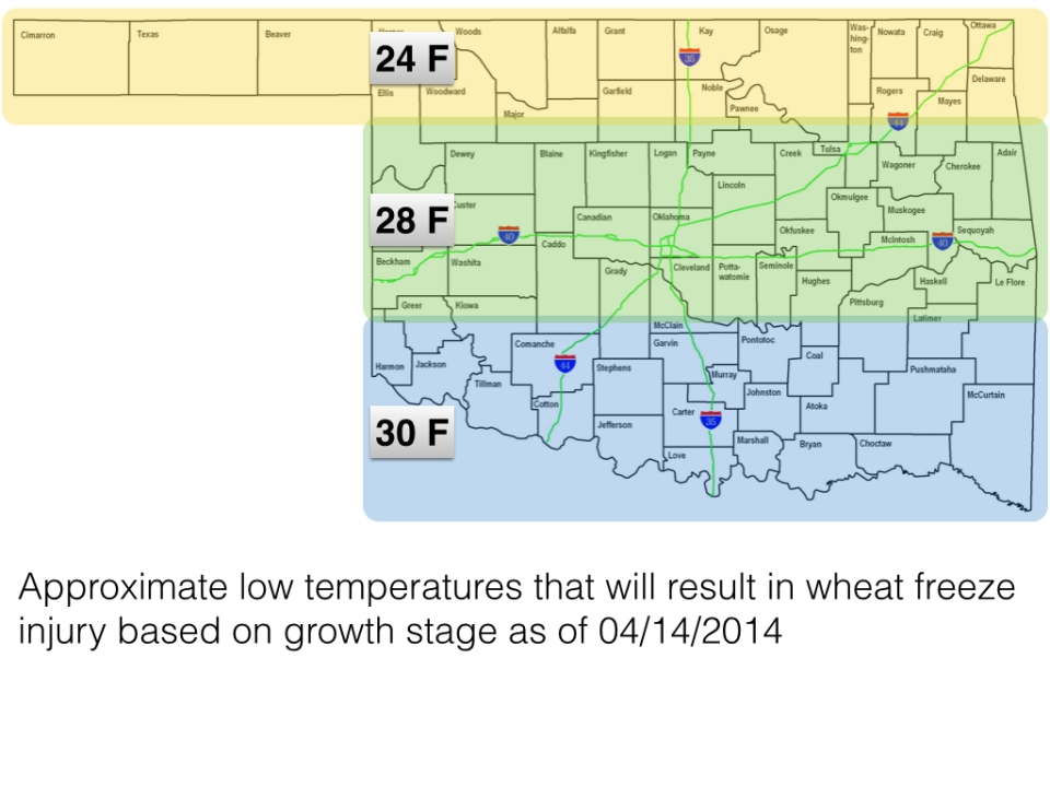 Approximate temperature thresholds for freeze injury to Oklahoma wheat on 04/14/2014